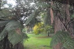 Free Camping Sites