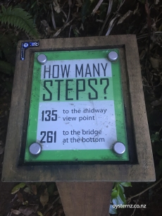 How many steps incentive